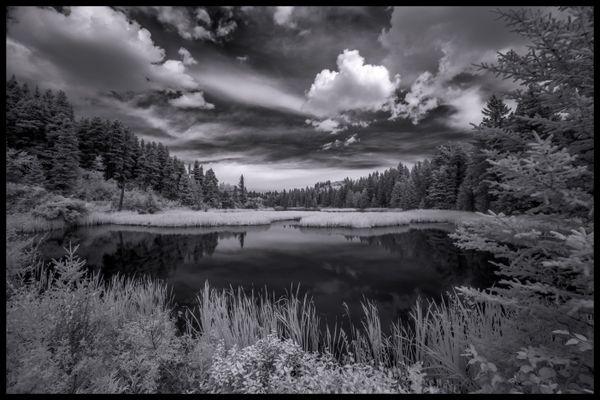 Pond at Cypress Hills Interprovincial Park, SK, Canada thumbnail