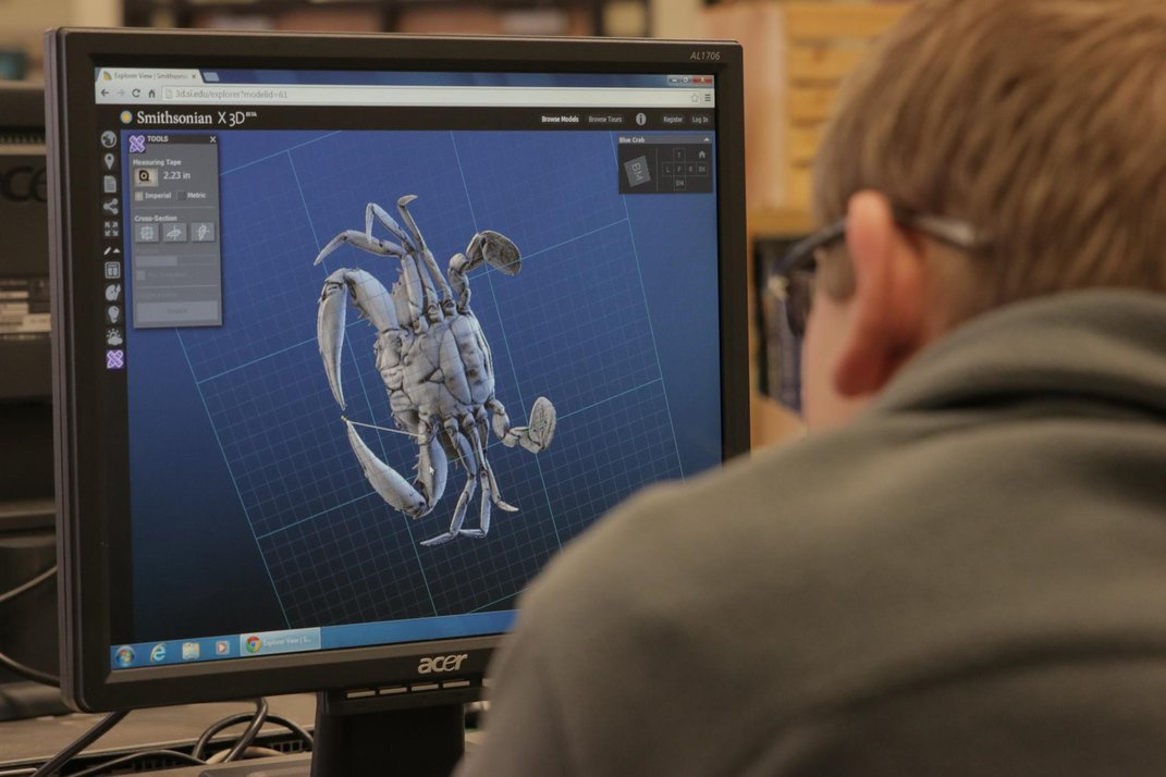 A person sitting in front of a computer screen showing 3D rendering of a crab shell on a blue background.