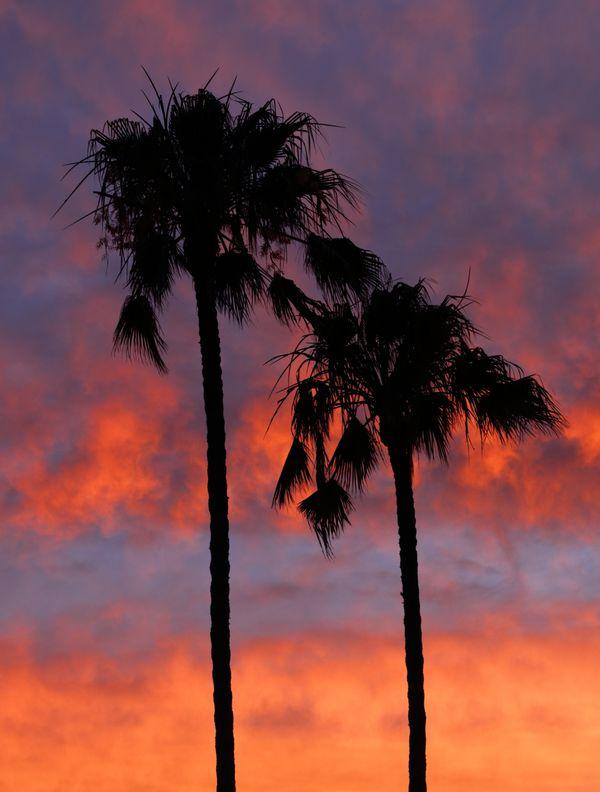 Firey Sunset thumbnail