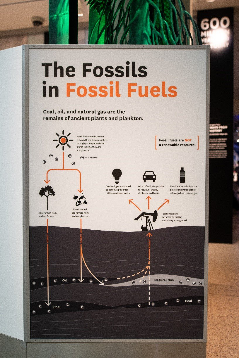 """White sign that says """"The Fossils in Fossil Fuels"""" in black and orange at the Smithsonian's National Museum of Natural History."""
