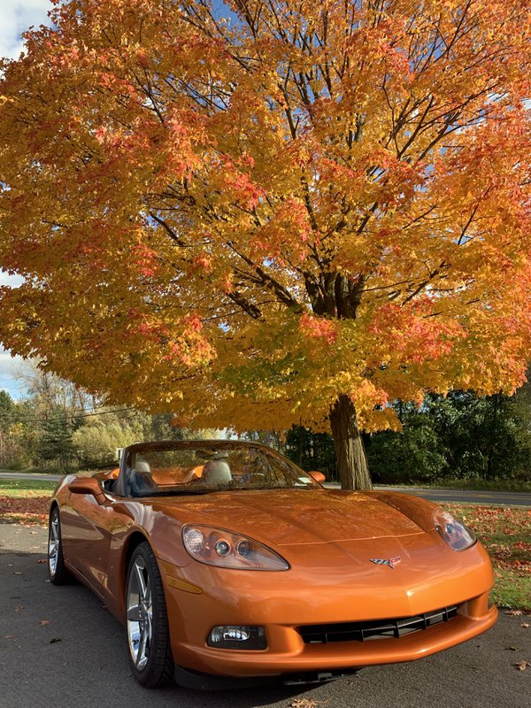 American Dream Corvette in the Fall thumbnail