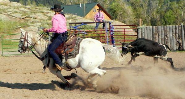 Team roper heading a steer thumbnail