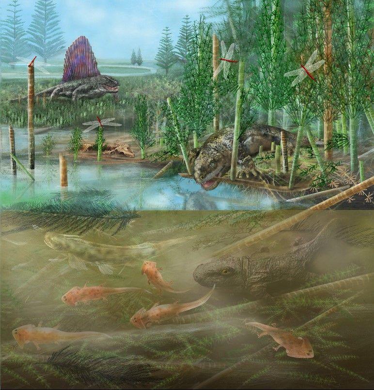A terrestrial and aquatic prehistoric ecosystem.