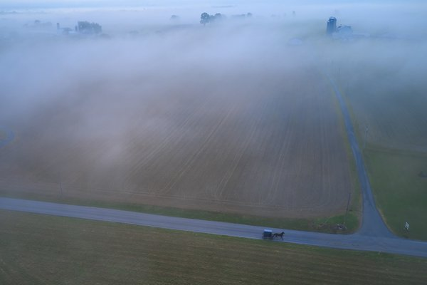 Foggy Morning in Amish Country thumbnail