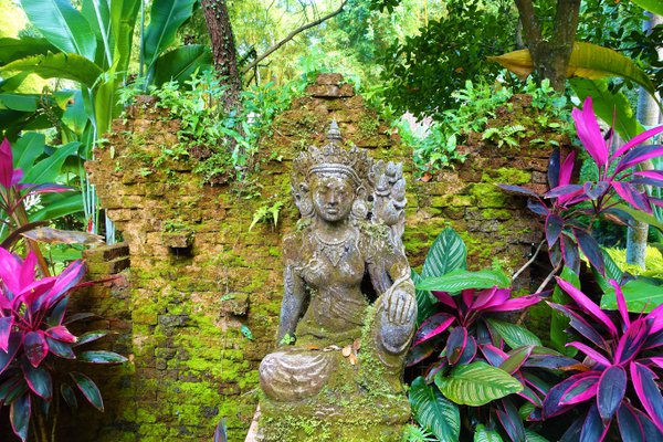 A statue is slowly covered with moss in Bali. thumbnail