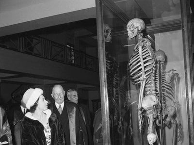 Queen Elizabeth examines the bones of Charles Byrne in 1962.