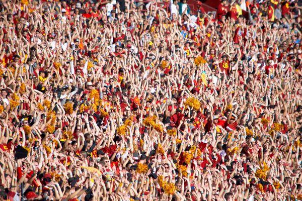 Football Fans thumbnail
