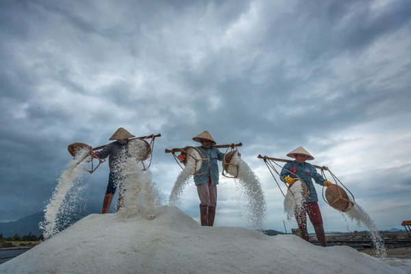 Busy Salt Fields 1 thumbnail