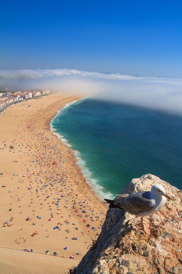 Nazare Beach thumbnail