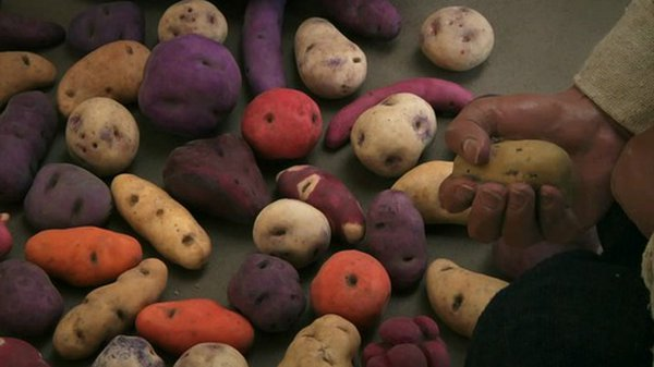 Preview thumbnail for Unearthing the History of the Potato