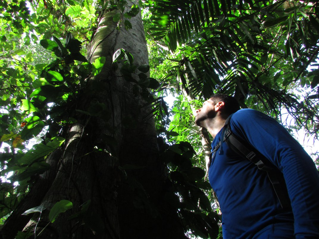 How Scientists And Indigenous Groups Can Team Up to Protect Forests and Climate