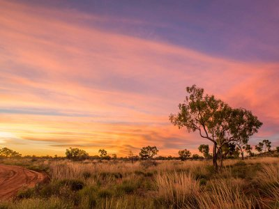 Newhaven Wildlife Sanctuary, where Aboriginal Warlpiri ranger Christine Ellis hunts feral cats to help protect native species