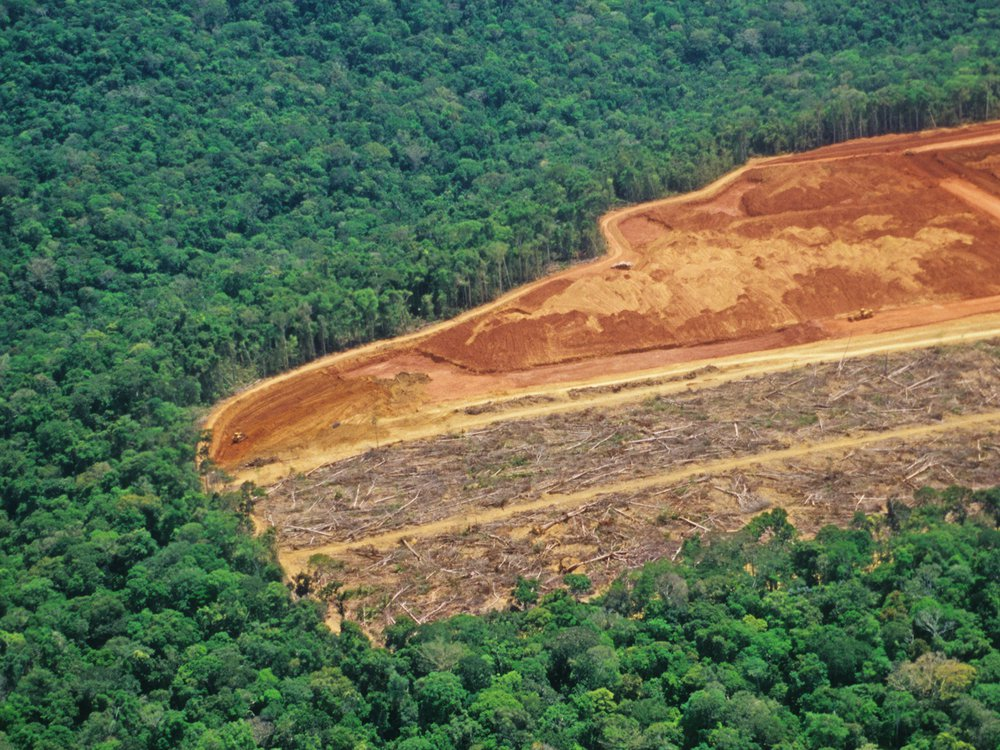 A deforested region of the Amazon rainforest