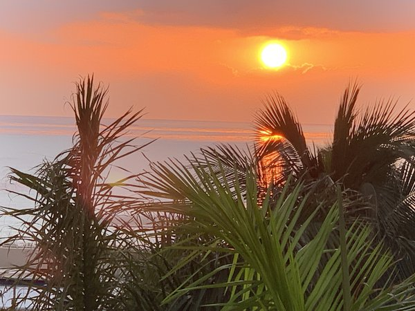 Walking to the beach, the sun  had risen already thumbnail