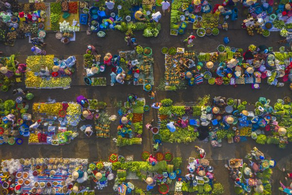 Agriculture Market thumbnail