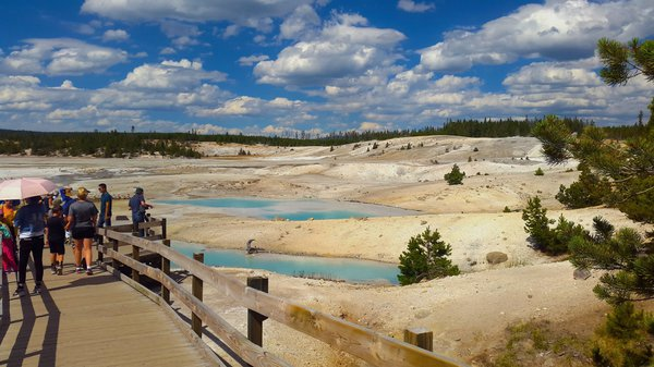 Norris Geyser Basin at the Yellowstone National Park thumbnail