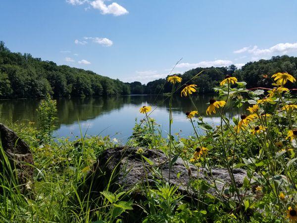 Swan Lake in The Rockefeller State Park Preserve, NY thumbnail
