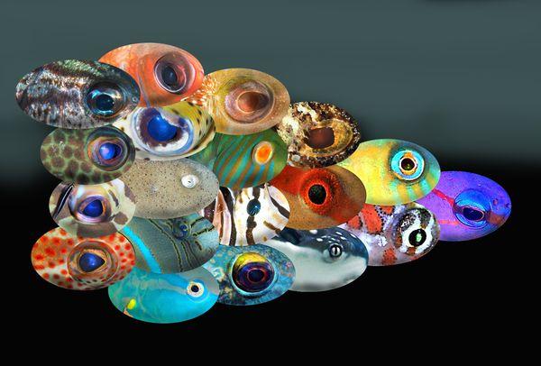 Flying Phalanx of Fisheyes  thumbnail