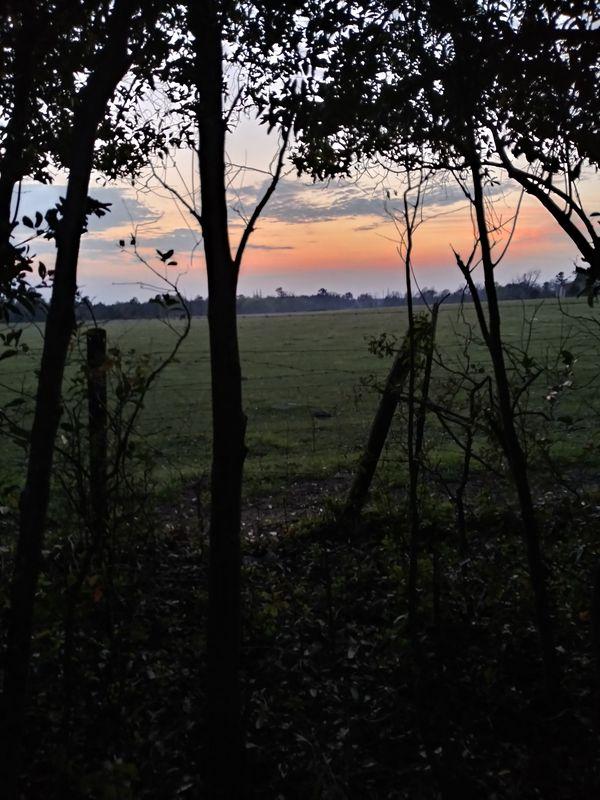 Southern Paradise Sunset thumbnail