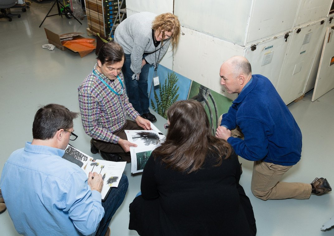 Five people include two members of the team behind the new fossil hall kneeling on the ground looking at images of ancient plants