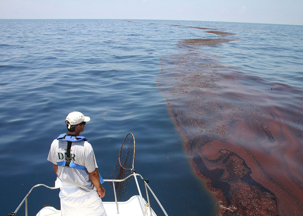 Surveying oiled sargassum