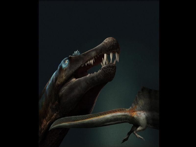 Artist's interpretation of a toothy Spinosaurus.