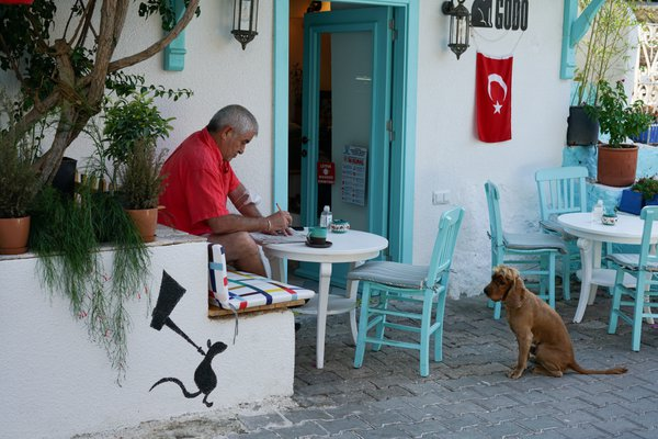 A dog vs a mouse in the city of Kas thumbnail