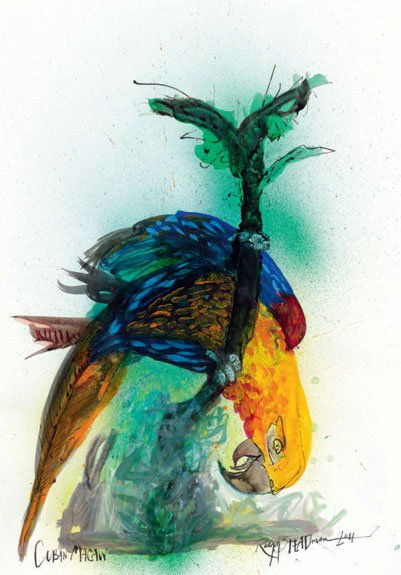 Bringing Extinct Birds Back to Life, One Cartoon at a Time