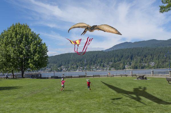 Children flying a kite. thumbnail