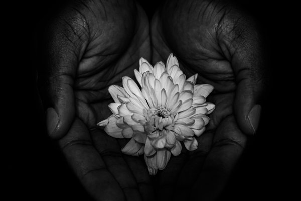 Mother Nature Cradled in Hands thumbnail