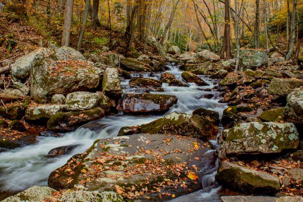 Autumn colors at the creek thumbnail