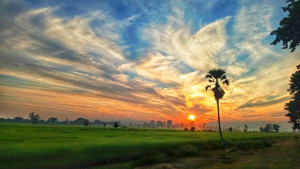 Beauty of sunset thumbnail