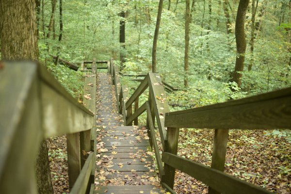 Stairway at McCormick's Creek State Park thumbnail
