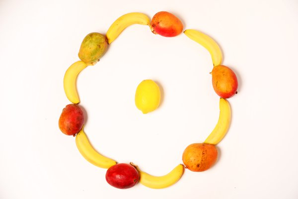 fruit circle thumbnail