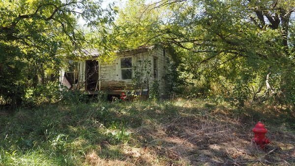 Abandoned house amidst the trees. thumbnail
