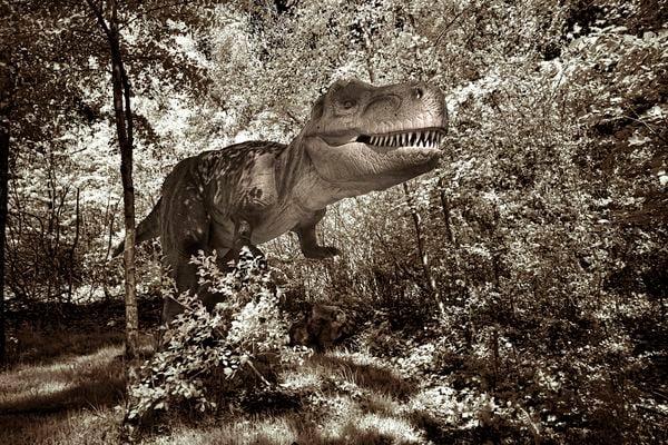 Dino Walk in Nature 5 thumbnail
