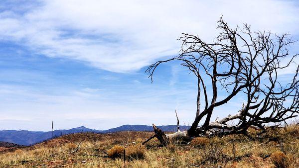 Desert clouds thumbnail