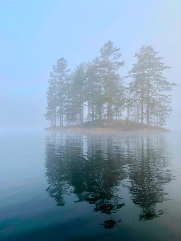 Fog on the Lake thumbnail