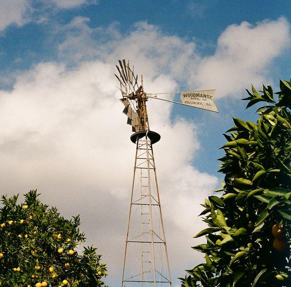 Woodmanse Windmill thumbnail
