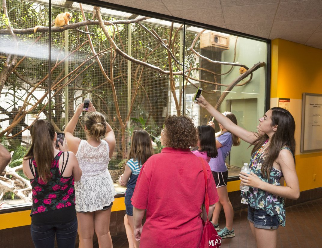 You will want your exhibit to give visitors a positive impression of the zoo. How will you measure this?