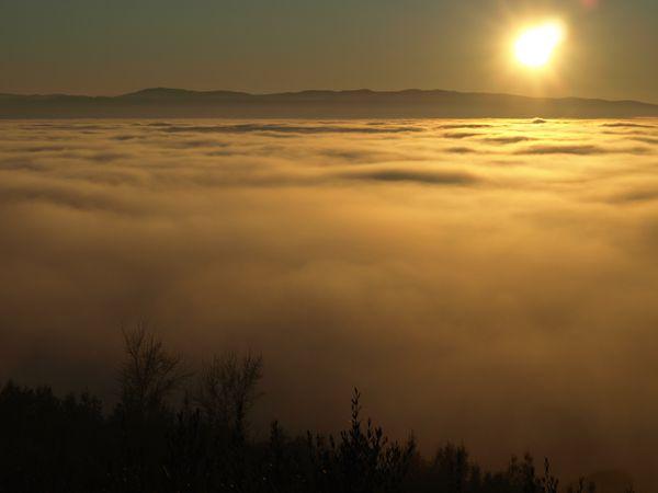 Umbrian Fog thumbnail