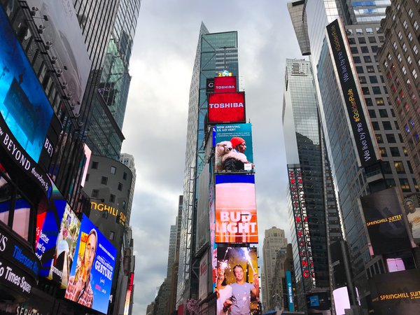 Times Square by Day thumbnail