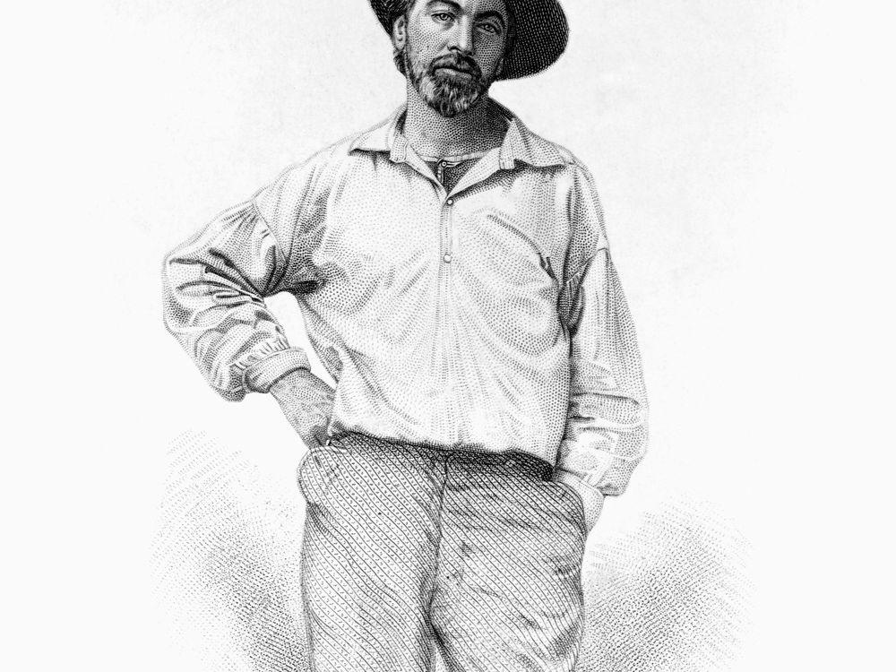 Whitman engraving