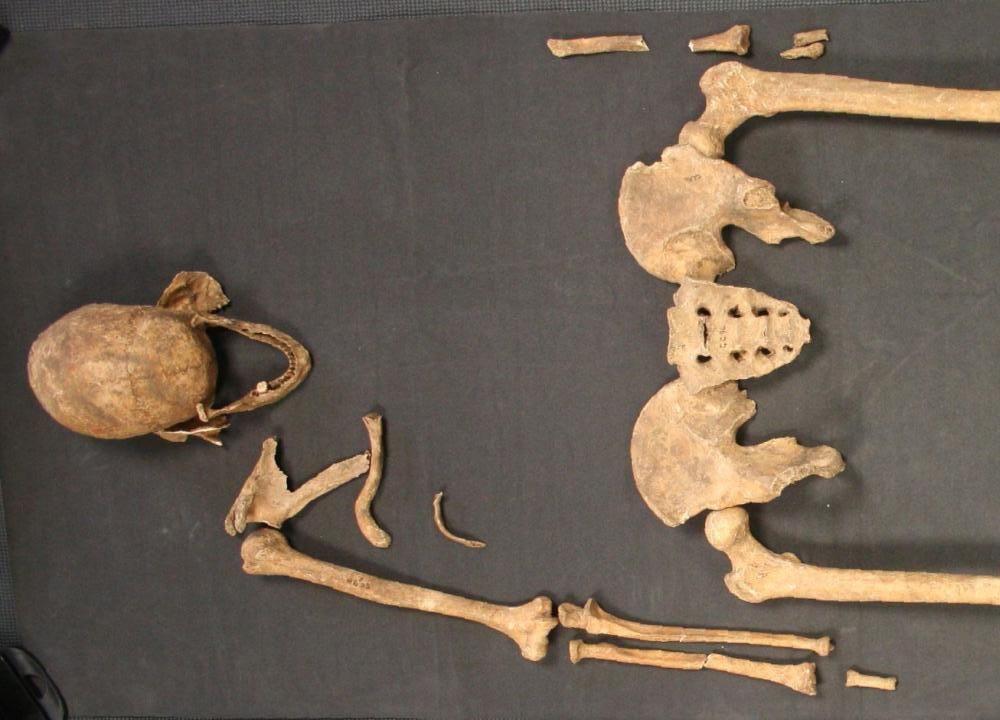 Great Chesterford skeleton
