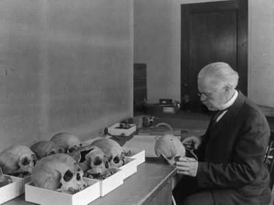 Measuring human skulls in physical anthropology