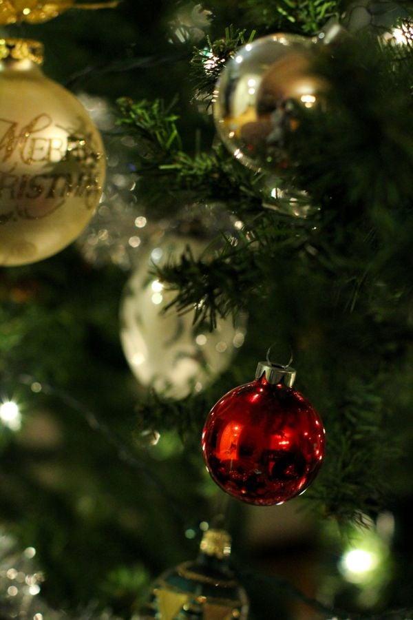 Holiday Cheer thumbnail