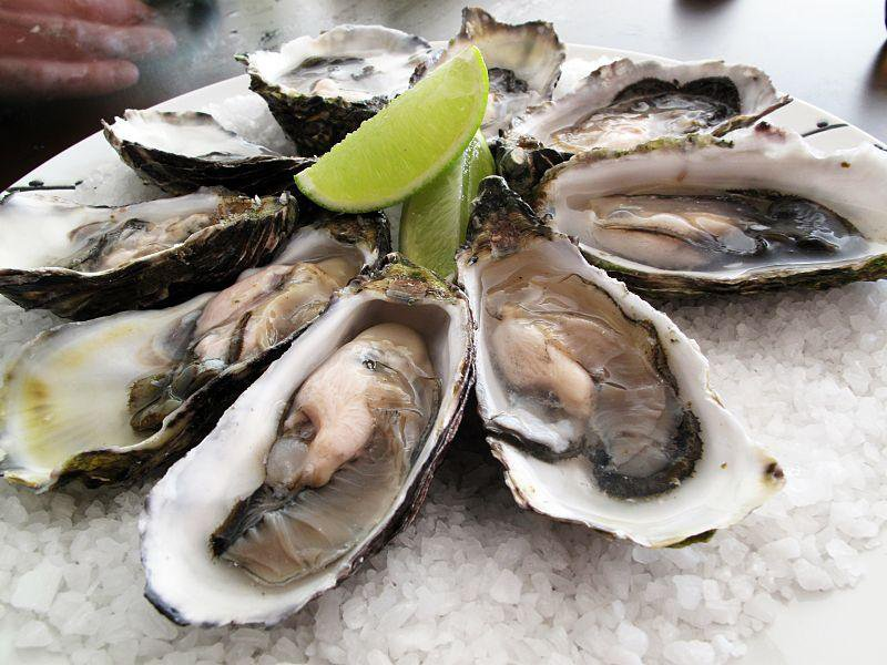 800px-Pacific_oysters.jpg