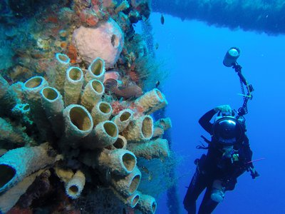 Decommissioned oil rigs attract both sea life and scuba divers.