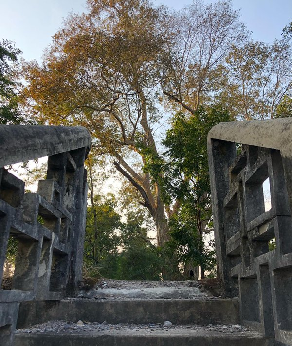 A ladder in abandoned ashram in India thumbnail