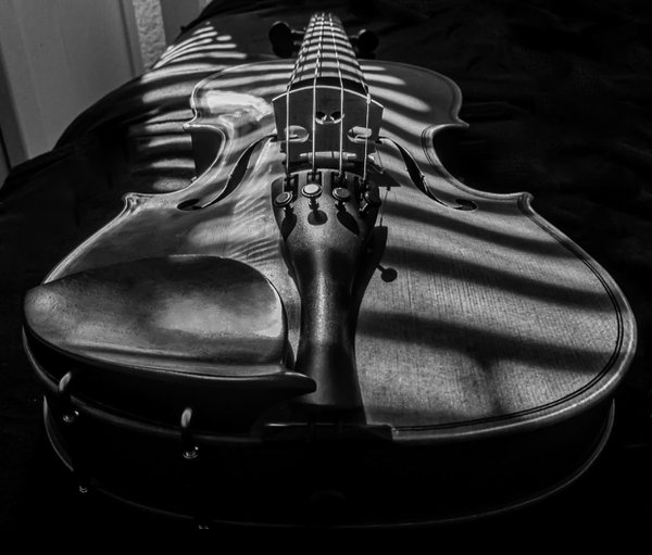 My violin in the shadows of my room thumbnail